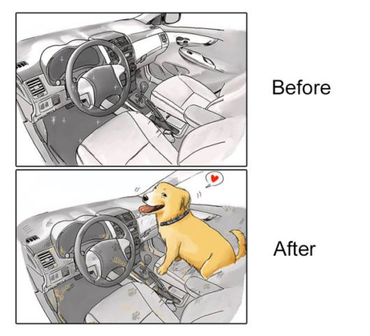 Awesome Funny Illustrations Show Life Before And After Getting A Dog