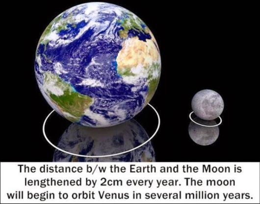 25 Various Interesting Facts Of The Month