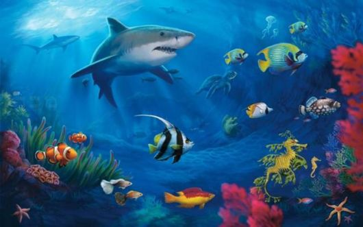 Seven Wonders Of The Underwater World