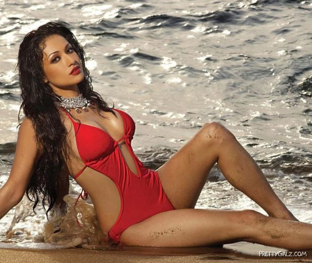 Awesome Latest Indian Celebs Gallery